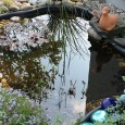 Sie planen Ihren Gartenteich mit einer Unterwasserbeleuchtung auszustatten, sind aber noch auf der Suche nach der richtigen Beleuchtung?