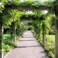 Seit der Antike sind Pergolas sehr beliebt. Damals hauptsächlich als Rankhilfe für Pflanzen gedacht, wird sie heute oft zur Verzierung des Gartens benutzt. Besonders in Italien sieht man sie häufig […]